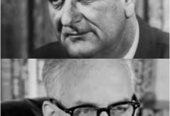 Lyndon B. Johnson:Barry Goldwater